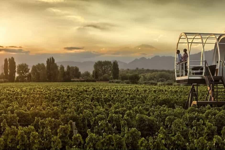 Entre Cielos: Winery + Hotel
