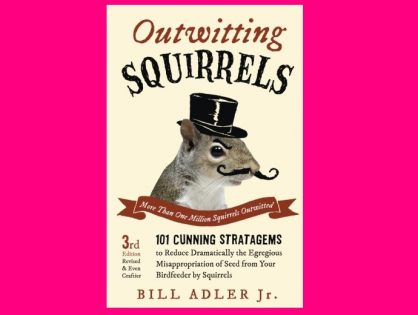 Outwitting Squirrels 101